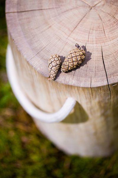 tree4tail oak table 5